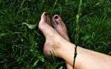 In iarba