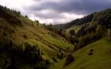 Valea cu calea, 2010