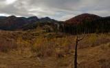 Fundatica Landscape
