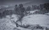 De iarna